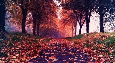 Photo of Park Sefton Park at Aigburth Dr, Liverpool L17 1AP, United Kingdom
