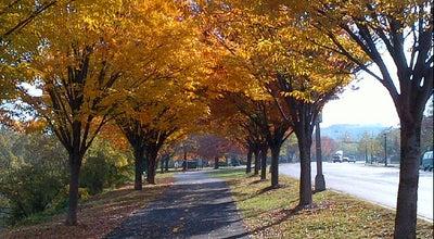 Photo of Trail Four Mile Run trail at 4141 S Four Mile Run Dr, Arlington, VA 22204, United States