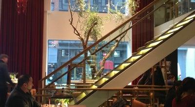 Photo of Italian Restaurant Vapiano at 113 University Pl, New York, NY 10003, United States