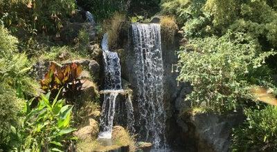 Photo of Garden Los Angeles County Arboretum and Botanic Garden at 301 N Baldwin Ave, Arcadia, CA 91007, United States