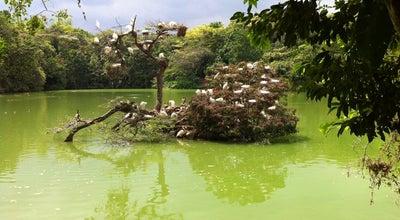 Photo of Park Ecoparque de las Garzas at Carrera 127 Con Calle 16, Cali, Colombia