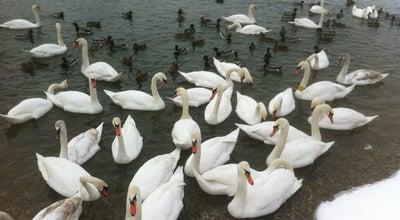 Photo of Lake Bundek at Bundek, Zagreb 10000, Croatia