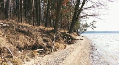 Photo of Beach Kauno Mariu Papludimys at Lithuania