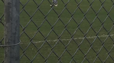 Photo of Baseball Field Pelican Baseball Field at Cape Coral, FL, United States