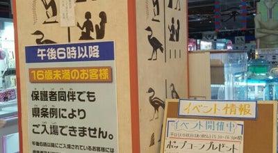 Photo of Arcade ナイル アピタ木曽川店 at 一宮市, Japan