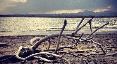 Photo of Lake Salt Lake Larnaca at Larnaca, Cyprus