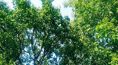 Photo of Botanical Garden Poyraz Köyü at Poyraz Köyü, Ankara Polatlı, Turkey