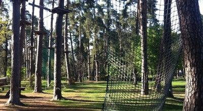 Photo of Theme Park Мотузковий парк «Seiklar» at Вул. Славгородська, 49, Київ, Ukraine