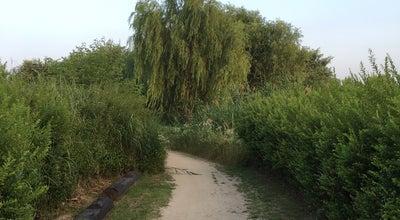 Photo of Park 난지 생태습지 at 대한민국 서울특별시 마포구 상암동 498-1, 서울특별시 121-832, South Korea