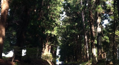 Photo of Trail 日光杉並木街道 at 瀬川地内, 日光市, Japan