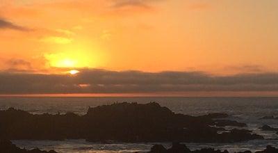 Photo of Beach Asilomar State Marine Reserve at Pacific Grove, CA 93950, United States