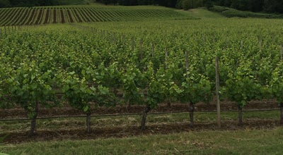 Photo of Tourist Attraction Cristom Vineyards at 6905 Spring Valley Rd Nw, Salem, OR 97304, United States