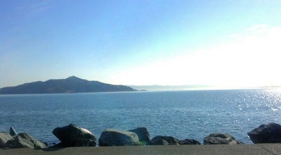 Photo of Harbor / Marina Seatrek Kayaking Center at 85 Liberty Ship Way, Sausalito, CA 94965, United States