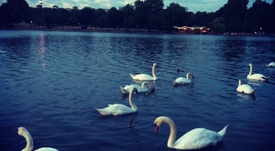 Photo of Lake The Serpentine at Serpentine Rd, London W2 2UH, United Kingdom
