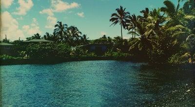 Photo of Lake Champagne Ponds at Laimana Ave, Pahoa, HI 96778, United States