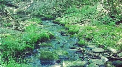 Photo of Trail Salem Lake Trail at Salem Lake Rd, Winston-Salem, NC 27107, United States