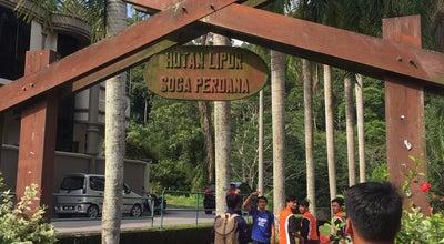 Photo of Trail Hutan Lipur Soga Perdana Viewpoint at Wooden Viewpoint Deck, Batu Pahat 83000, Malaysia