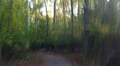 Photo of Trail Rock Creek Park Trail at Beach Dr, Kensington, MD 20895, United States