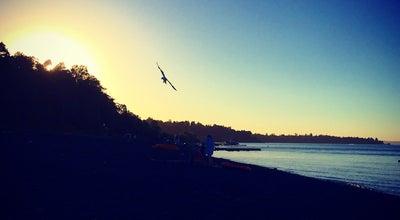 Photo of Beach Playa Chilco at Ruta Villarrica - Pucón, Pucón, Chile