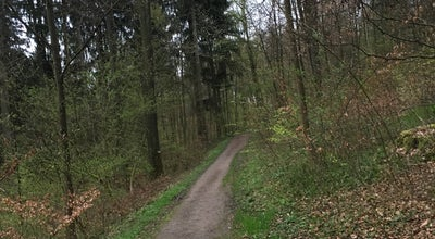 Photo of Trail Trail Käferberg at Zurich, Switzerland