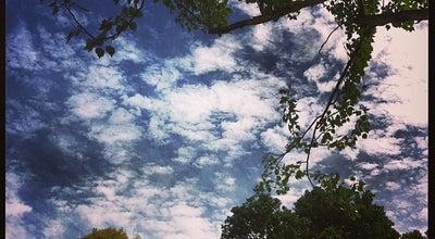 Photo of Park Central Park at Burke Rd, Malvern, Australia