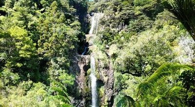 Photo of Trail Kitekite Falls at Piha, New Zealand