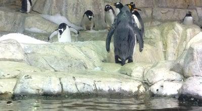Photo of Aquarium Scott Aquarium at Henry Doorly Zoo, Omaha, NE 68108, United States