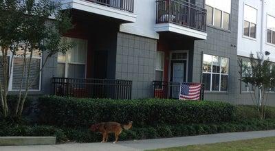 Photo of Dog Run Block Lofts & Condos - Dog Walk at 747 Ralph Mcgill Blvd Ne, Atlanta, GA 30312, United States