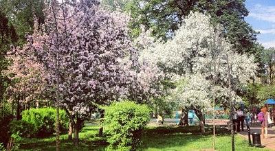 Photo of Park Миусский сквер at Миусская Пл., Москва, Russia