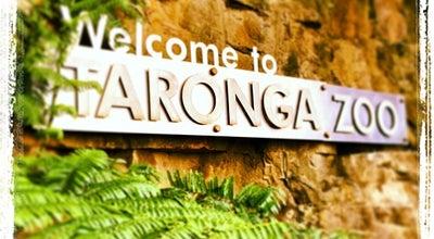Photo of Zoo Taronga Zoo at Bradley's Head Rd., Mosman, NS 2088, Australia