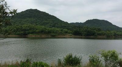Photo of Lake 湘湖 Xiang Hu at 湘湖路, China