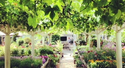 Photo of Garden Center Clifton Nurseries at 5a Clifton Villas, London W9 2PH, United Kingdom
