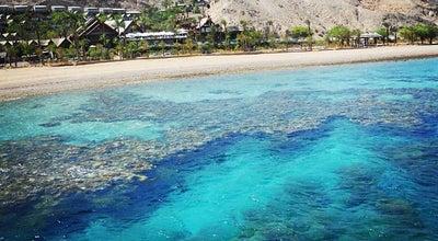 Photo of Beach Coral Beach at Eilat, Israel