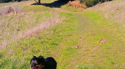 Photo of Trail Wildcat Canyon Regional Park at 5755 Mcbryde Ave, Richmond, CA 94805, United States