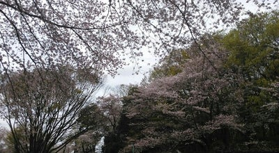 Photo of Trail 黒鐘公園 at 武蔵台2, 府中市, Japan
