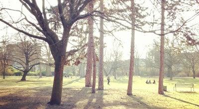 Photo of Park Stadtgarten at Spichernstr., Köln 50672, Germany