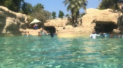 Photo of Water Park Shark Ride Aquaventure at Atlantis The Palm, Dubai, United Arab Emirates