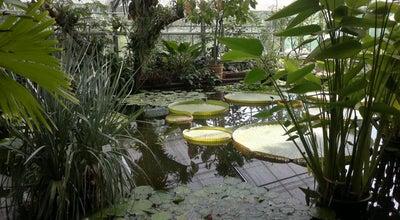 Photo of Botanical Garden Botanischer Garten der Technischen Universität Dresden at Stübelallee 2, Dresden 01307, Germany