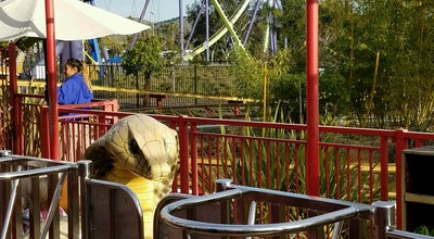 Photo of Theme Park Cobra at Six Flags Discovery Kingdom, Vallejo, CA 94589, United States