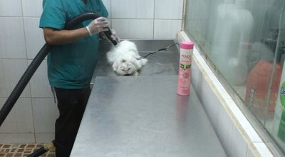 Photo of Pet Store جزيرة الحيوان at مخرج ١٠, الرياض, Saudi Arabia
