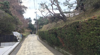 Photo of Trail 亀ヶ谷坂 切通し at 扇ガ谷, 鎌倉市 248-0011, Japan