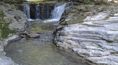 Photo of Park Saunders Springs Nature Preserve at N Wilson Rd, Radcliff, KY 40160, United States