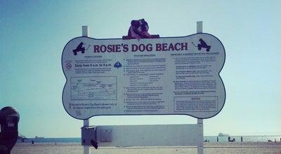 Photo of Beach Rosie's Dog Beach at 4800 E Ocean Blvd, Long Beach, CA 90803, United States