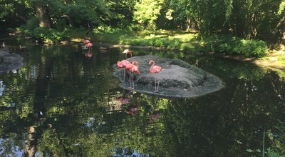 Photo of Arts and Entertainment Aquatic Bird House at Bronx Zoo, NY, United States