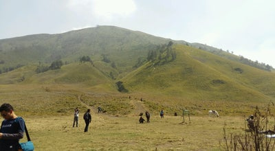 Photo of Mountain Bukit Teletubbies at Padang Rumput Savana, Probolinggo, Indonesia