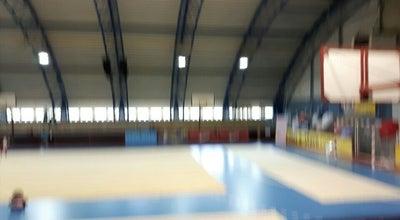 Photo of Basketball Court Športni center Triglav at Vodovodna 25, Ljubljana 1000, Slovenia
