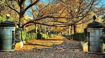 Photo of Garden Real Jardín Botánico Alfonso XIII at Av. Complutense, Madrid 28040, Spain