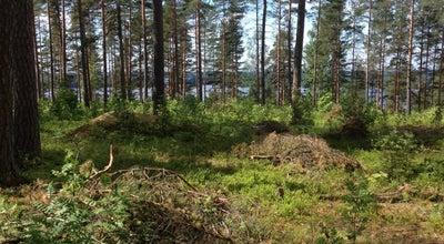 Photo of Trail Lohjanharjun Ulkoilureitit at Lohja 08100, Finland