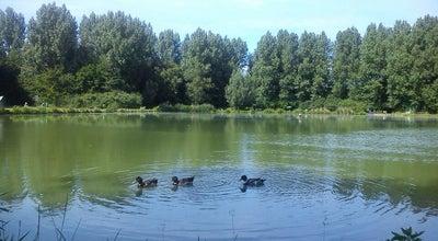 Photo of Lake Visputten meulenbroek at Meulenbroek, Belgium