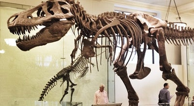 Photo of Other Venue American Museum of Natural History at 200 Central Park West, New York, NY 10024, United States
